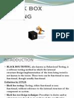 Black Box Testing.ppt