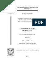 PDFunificado.pdf