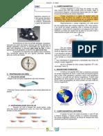 Eletromagnetismo.pdf