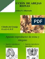 1104041802.cria de reinas.pdf
