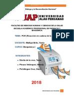 PCR Monografia