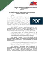 RESOLUCION HUGO PELAYO CARRILLO.docx