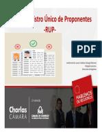2016-01-27 HDR RUP.pdf