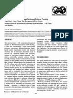 SPE-29904-MS.pdf
