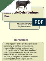 Dairy Farming Feasibility