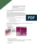 Histologi+histopatologi kulit.docx