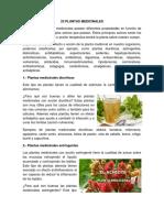 25 PLANTAS MEDICINALES.docx