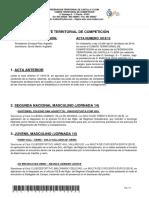 Acta Nº 15 Comité Territorial de Competición