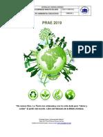 PRAE  2019 GIMNASIO MINUTO DE DIOS.docx