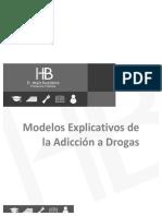 MODELOS DE ADICCION A DROGAS