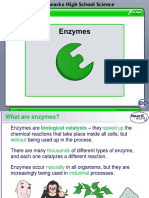 5__enzymes__1_ (1)