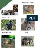 animales en extincion y arboles.docx