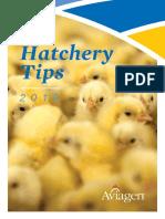HatcheryTips2018-1-28-EN.pdf