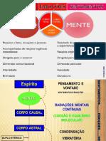 instintossensaesemoessentimentos-180121114728.pdf