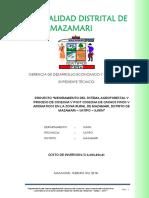 EXP. mazamari 28.docx