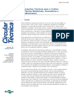 CT70plantas