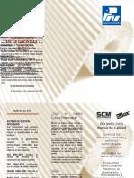 Triptico del SGI.docx