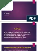 ARNES DIAPOSITIVAS.pptx