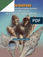 J Moluscos.pdf