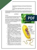 LA CÉLULA (1).docx