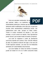 aves.pdf