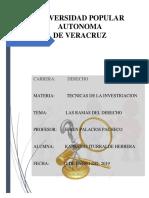 LAS RAMAS DEL DERECHO.docx