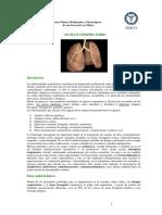 18___RESPIRATORIO_I_2012__Generalidades_resfrios_rinitis_sinusitis_faringitis.pdf_AMARILLO.pdf