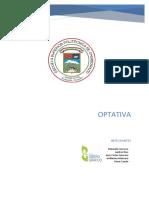 informe_pryecto.docx