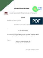 Aguamiel.pdf