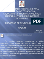 Caulim 3