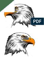 Águila 30.docx