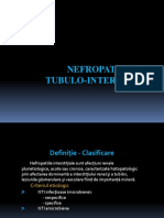 Curs 4- Nefropatiile Tubulo- Interstitiale