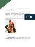 2- Seguridad Industrial.docx