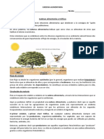 FICHA_1_CADENA_ALIMENTARIA_83572_20180501_20160927_130005.DOC.docx