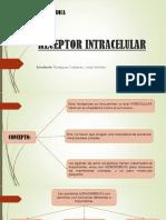Receptor Intracelular