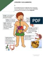 La Nutrición y Los Alimentos 2017