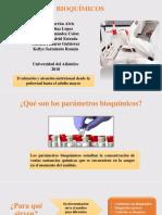 Exposicion Parametros Bioquimicos