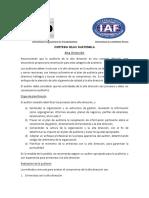 GUIA IAF Alta Dirección 9001-2015-1