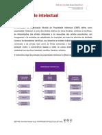 propriedade-intelectual-det.pdf