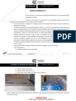 Producto Académico N 1 (Entregable)TERMINADO (2).docx