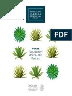 Planeación Agricola Nacional -Agave_Tequilero_y_Mezcalero.pdf