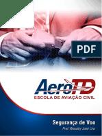 segurança de voo