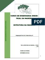 Estrutura Da Madeira