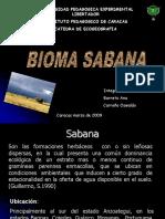Ecogeografia
