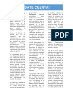 PORFIRISTA.docx
