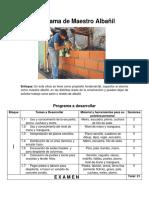 Programa de Maestro Albañil.docx