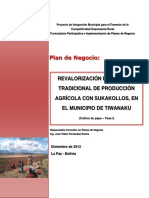 PLAN DE NEGOCIOS SUKAKOLLOS DE PAPA TIWANAKU .docx