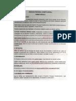 resumen procesal constitucional.docx