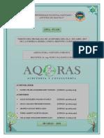 DISEÑO DE PROGRAMA DE AUDITORÍA.docx