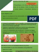 Clases de Patologia Vegetal 2018-i